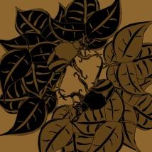 "Suzanne Skaar. ""Beetles."" Digital Media. 2014. Commissioned work."