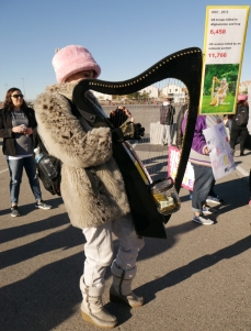 Attendee playing harp at Las Vegas Women's Rally, 2018.