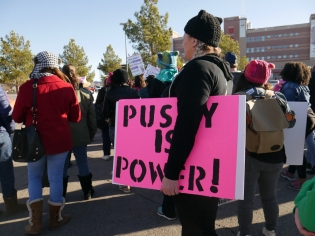 "Attendee holding sign at 2018 Las Vegas Women's Rally: ""Pussy is Power."""